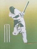 003 cricket